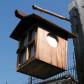 盆灯籠。お盆のときにお墓に灯す灯籠は、他にはない古い形を残しています。